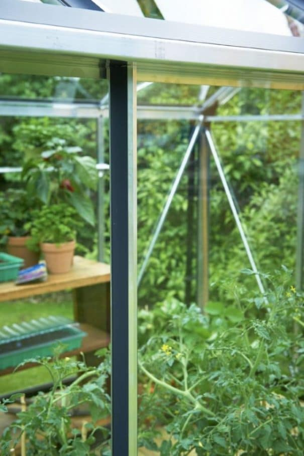 Serre de jardin adossée - 2.21x2.96m - Veranda - Juliana - 6.6m² (Vue 6)
