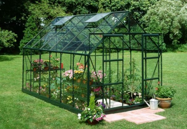 Serre de jardin classique - 2.57x3.84m - Magnum 128 - Halls - 9.9m² (Vue 2)