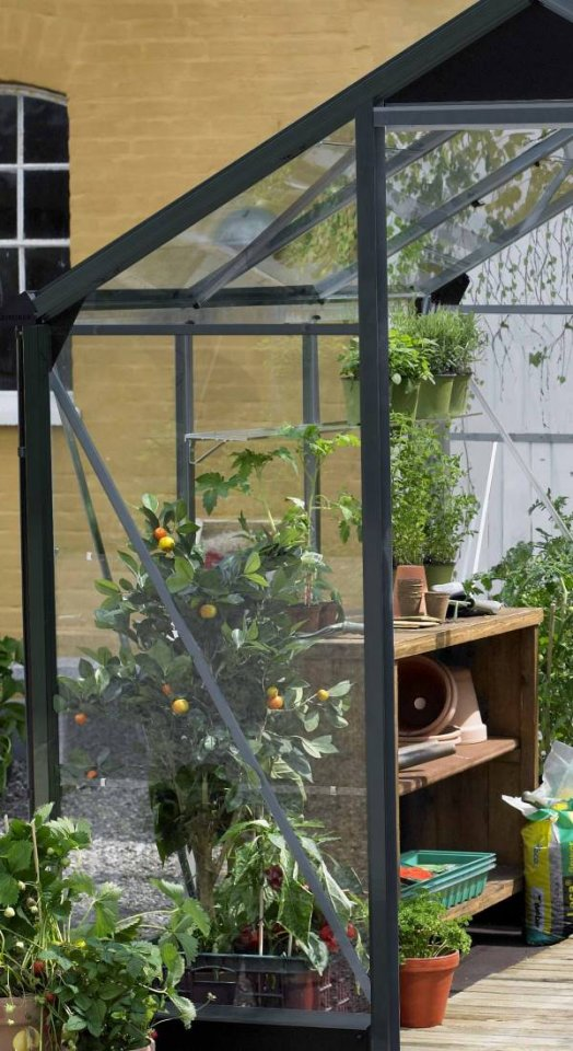Serre de jardin grande surface - 2.96x2.96m - Premium - Juliana - 8.8m² (Vue 5)